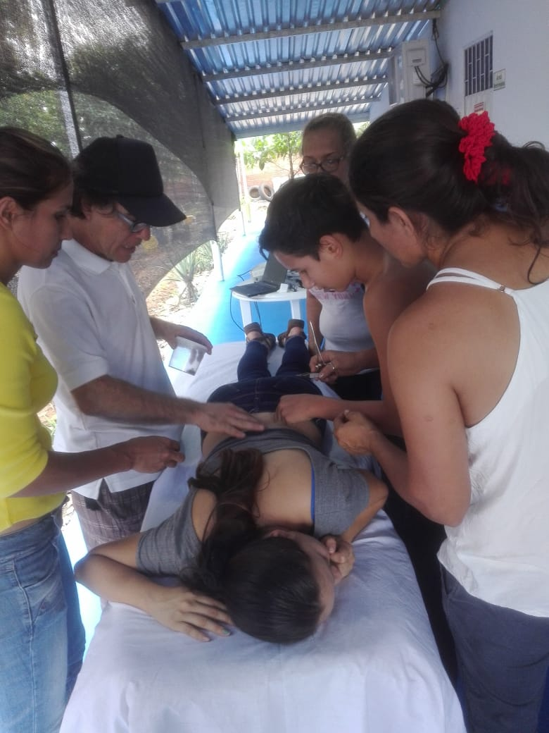 colombia_apimedicina